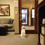 Office photo 7 | Hedman Counseling Center | Colorado Springs, CO 80918